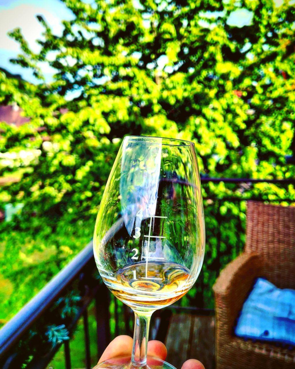 Nosingglas mit Whisky